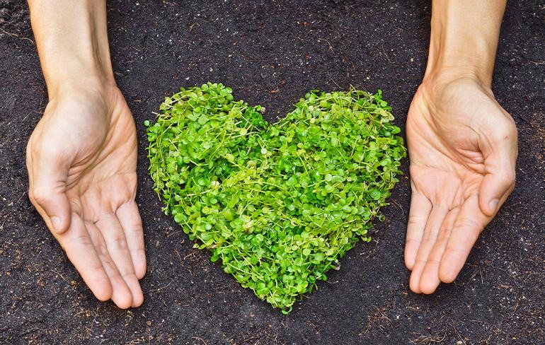 2021 World Environment Day