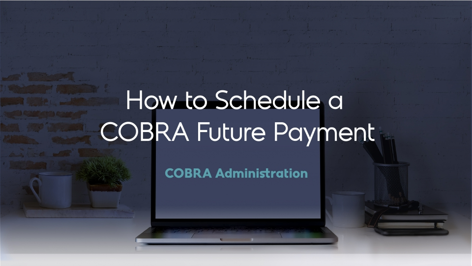 Preview image for How to Schedule a COBRA Future Payment